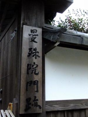 2011_1128ブログ0107