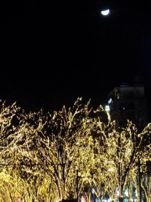 2012_0104ブログ0029