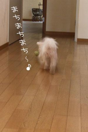 10_10_5434.jpg