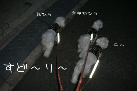 10_11_7067.jpg