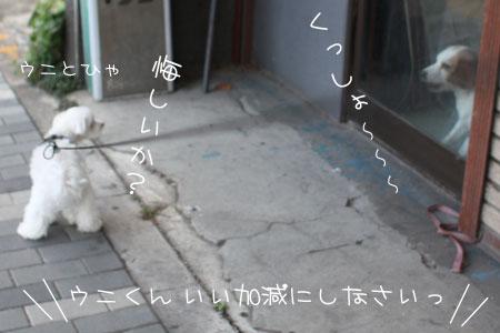 10_12_9066.jpg