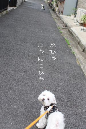 10_12_9072.jpg
