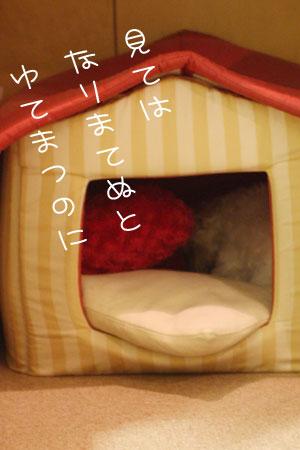 10_12_9135.jpg