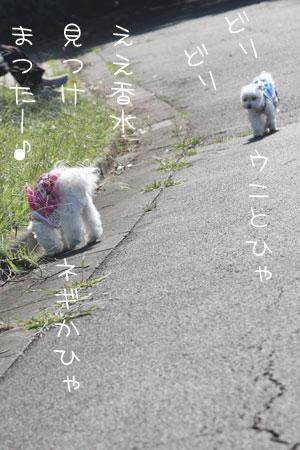 10_13_5917.jpg