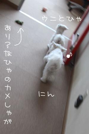 10_14_5989.jpg