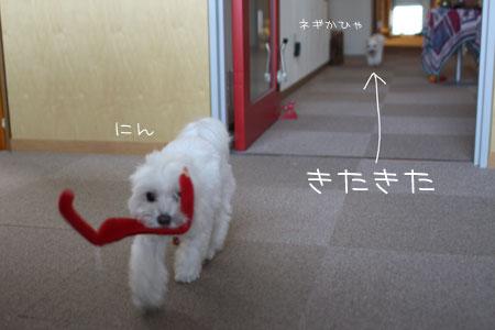 10_15_9632.jpg