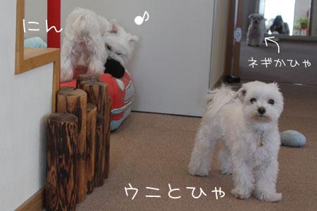 10_16_6211.jpg