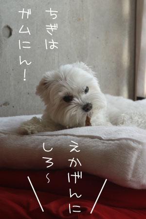 10_16_6242.jpg