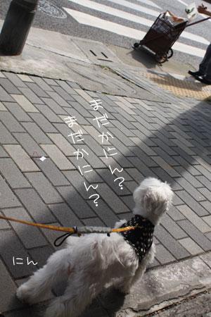 10_16_9701.jpg