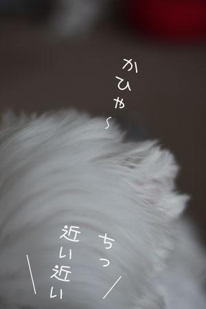 10_17_0047.jpg