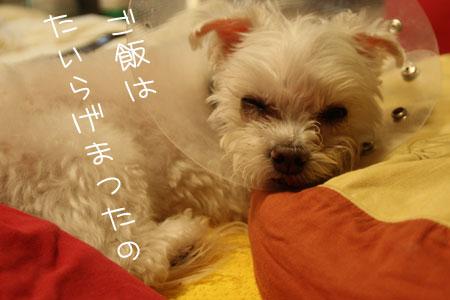 10_17_7269.jpg