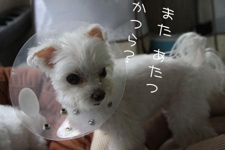 10_18_7300.jpg