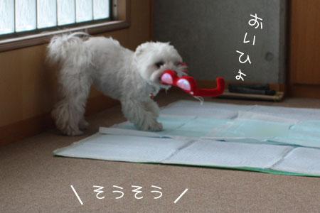 10_19_0363.jpg
