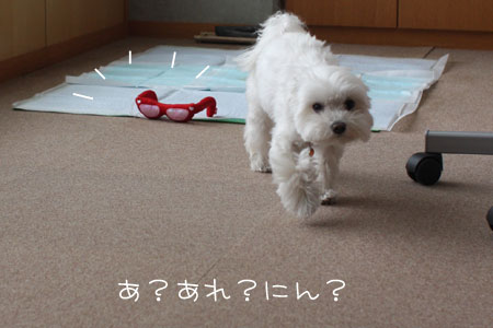 10_19_0367.jpg