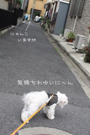 10_19_0437.jpg