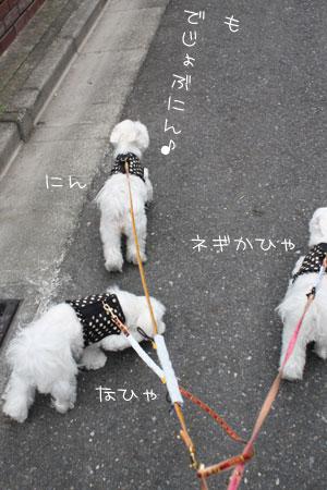 10_19_0467.jpg