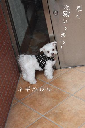 10_19_0513.jpg
