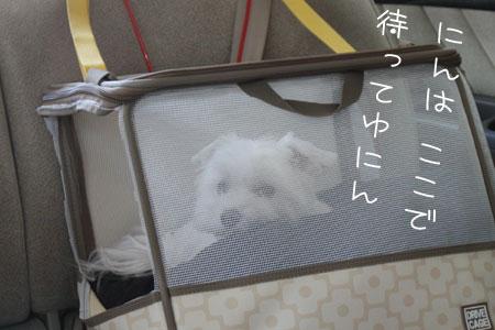 10_1_7924.jpg