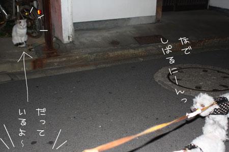 10_20_0707.jpg