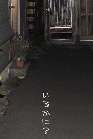 10_20_0709.jpg