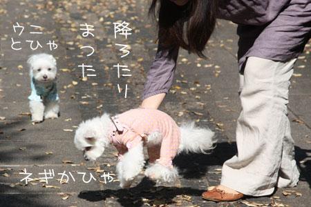 10_21_7249.jpg