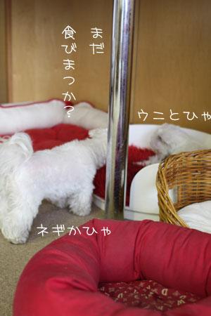 10_22_0861.jpg