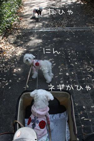 10_22_7574.jpg