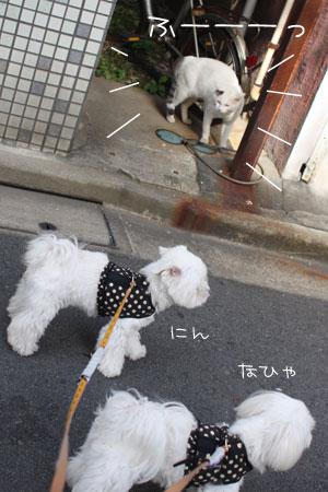 10_23_0977.jpg