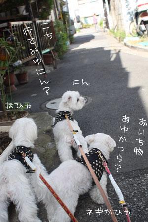 10_23_0978.jpg