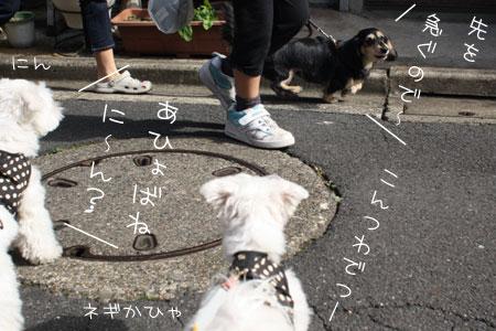 10_23_0991.jpg
