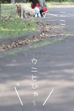 10_23_7871.jpg