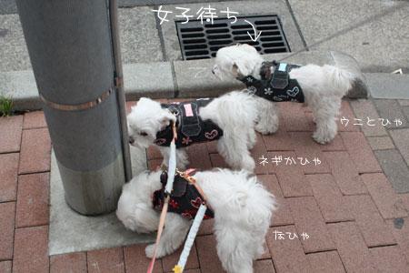 10_24_1051.jpg