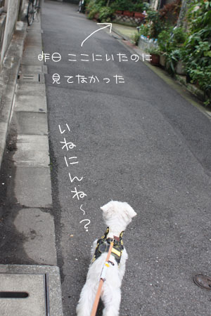 10_24_1055.jpg
