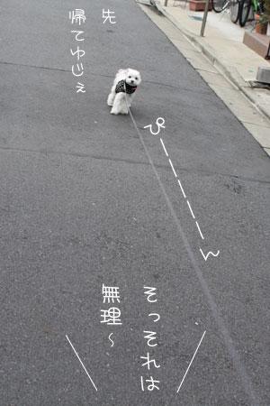 10_25_1197.jpg