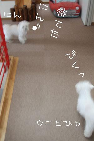 10_25_7946.jpg