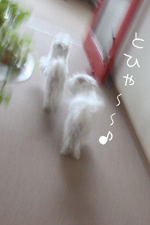 10_25_7950.jpg