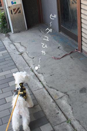 10_27_1350.jpg