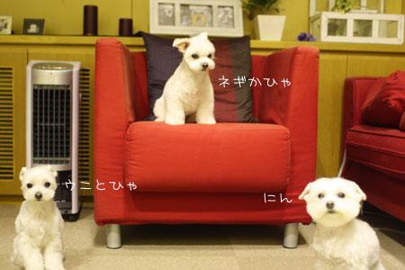 10_28_1620.jpg