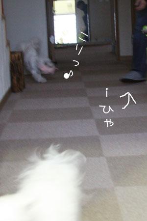 10_2_4661.jpg