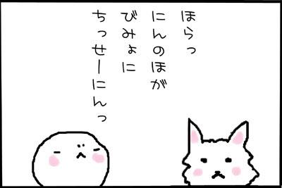 10_3.jpg
