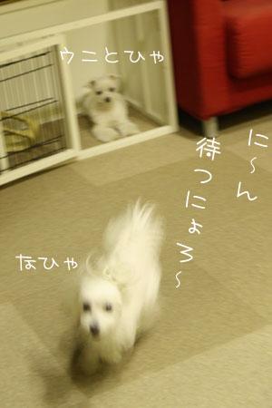 10_31_7863.jpg