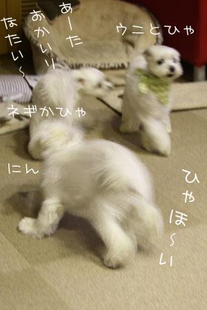 10_3_4869.jpg