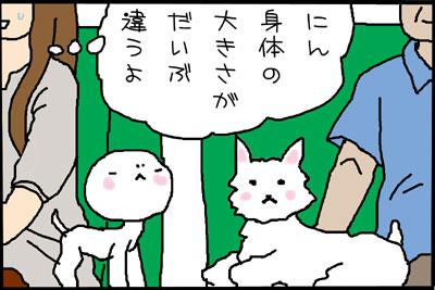 10_4.jpg