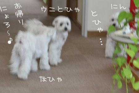 10_5_5052.jpg