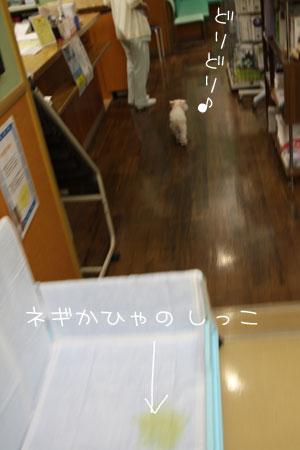 10_5_6723.jpg