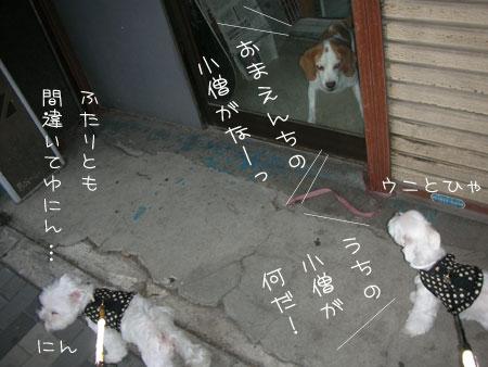 10_5_7040.jpg