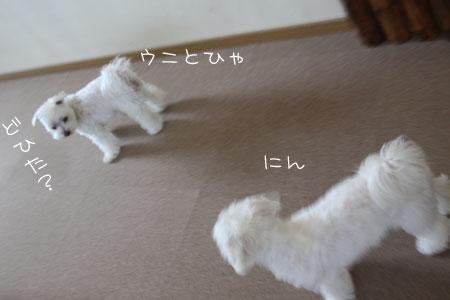 10_6_5126.jpg
