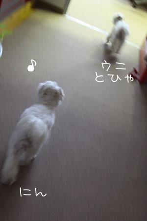 10_6_5128.jpg