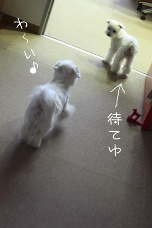 10_6_5130.jpg