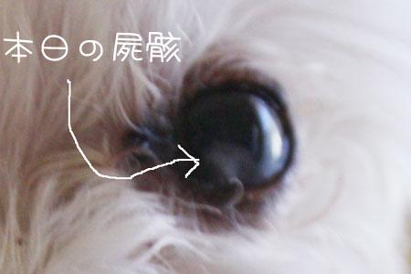 10_6_6745.jpg